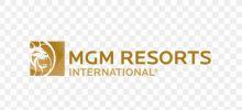 MGM Resorts Aviation
